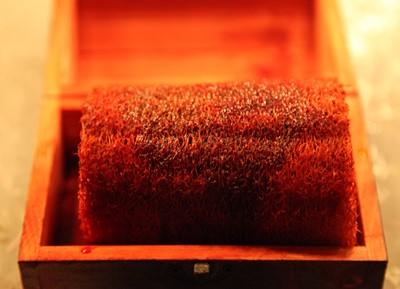 La esponja de Alejandro Magno