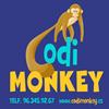 CodiMonkey