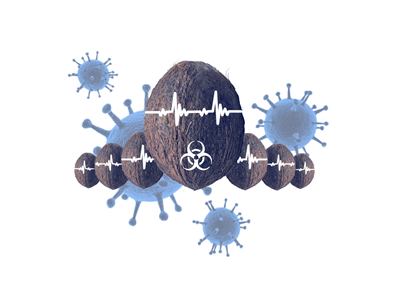 Virus LIHTE
