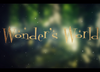 Wonder's World