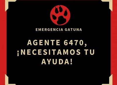 Emergencia Gatuna