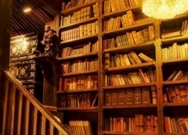La biblioteca de Pinza