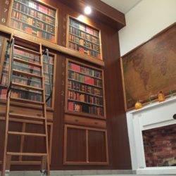 Museum: El eslabón perdido
