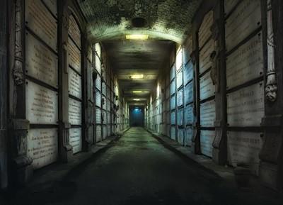La Maldición de la Cripta